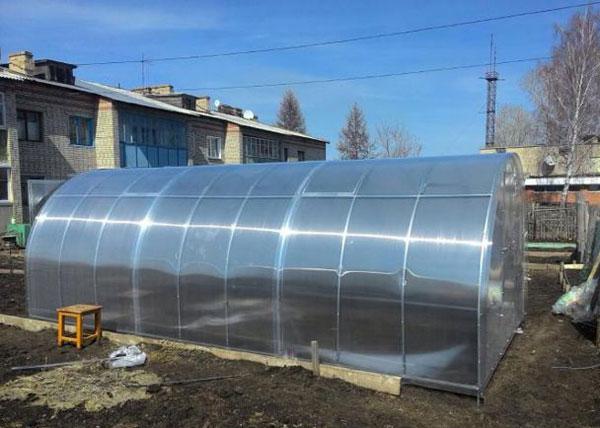Теплица из поликарбоната 500x800x250см